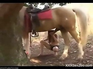 Amateur outdoor zoophilia with a horse in really slutty scenes