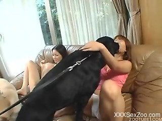 Superb Asian woman amazing hardcore sex with animals