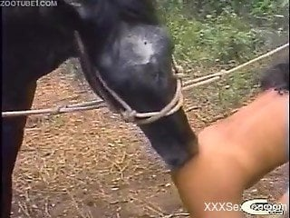 Strong scenes of outdoor horse shagging with women addicted to...