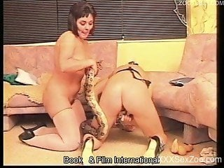 Severe snake porn in home video with naked females
