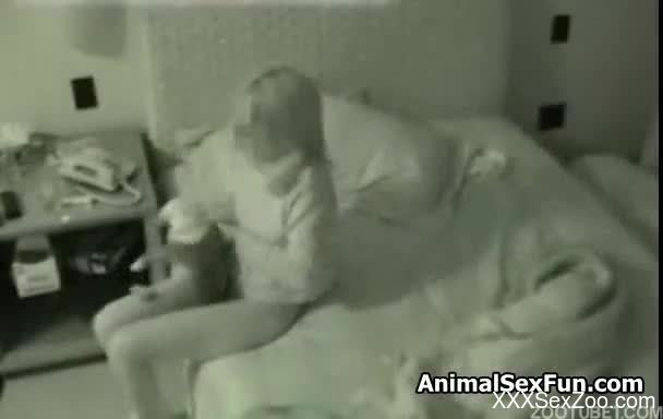 Slut moms and pets sex videos are
