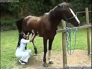 Tanned amateur slut horse fucking in outdoor zoo scenes
