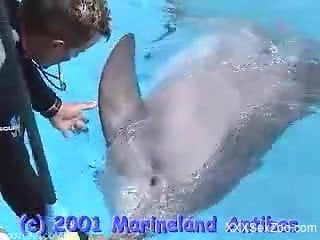 Dolphin porn video with amateur trainer enoying the penis