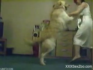 Horny dog jumps on top of a girl in a white dress