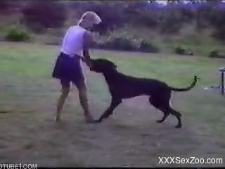 Threesome with a big-dicked black dog during a picnic