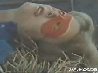 Dalmatian gets a blowjob from a mask-wearing slut