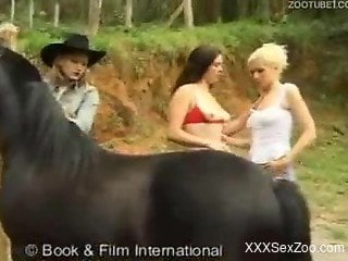 Three cowgirls encounter a horse and suck its massive cock