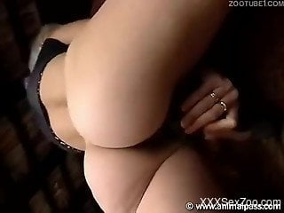 Wig-wearing chick with a tight butt riding a horse cock