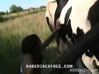 Horny female enjoys the cow for her nude zoo porn video