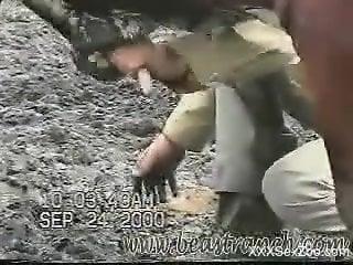 Horny farmer eagerly jerking a horse's meaty boner
