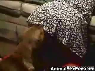 Moist pussy mommy getting fucked by her kinky pet