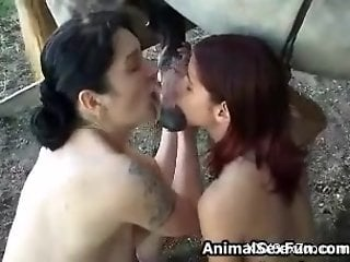 Two beauties cannot wait to share that horse's semen