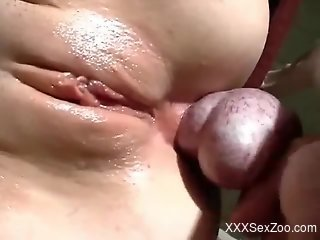 Close-up anal with a cock-hungry bestiality addict