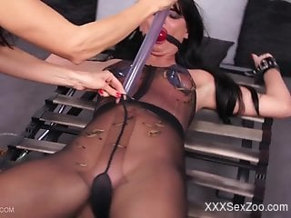 Bondage and bug-centric bestiality torture for a brunette