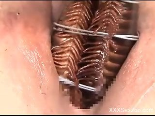 Nude woman inserts crawling insects into her vagina and ass
