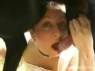 Mature women in a spicy compilation of dog zoophilia