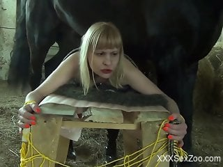 Blond-haired bestiality addict fucked while tied up