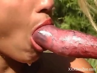 Compilation of the hottest zoophile blowjobs of 2021