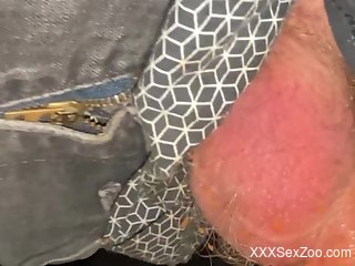 Dirty dude using his cock to pleasure the beast